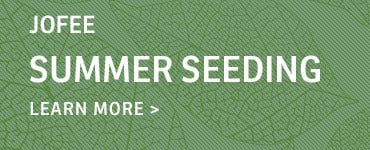 SummerSeeding-callout