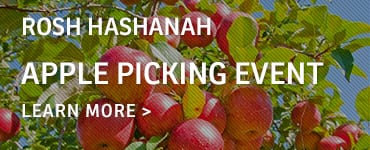 apple-picking-callout