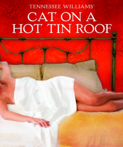 cat on a hot tin room