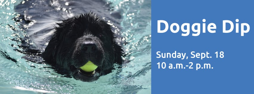 Let the Pups Play at The J's Doggie Dip Day